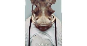 Warthog-1000px